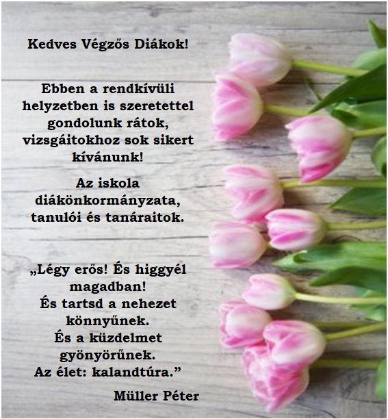 Vegzos_diakok